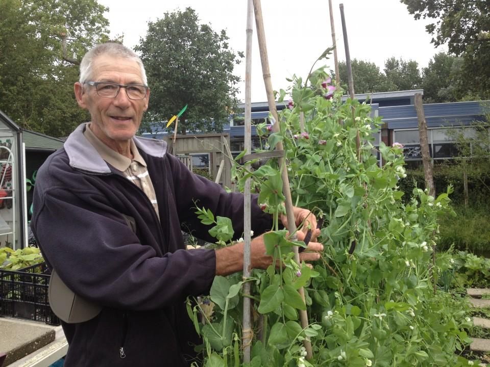 'Kinderen leren dat aardappel onder de grond groeit'