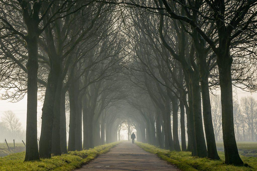 Zeven Maat, foto Pascal Fielmich/Dit is Assendelft